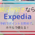 エクスペディアは年間の旅行が多い人は絶対お得!ポイントで宿泊代節約しよう